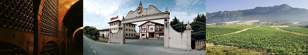 banner-faustino-image2.png