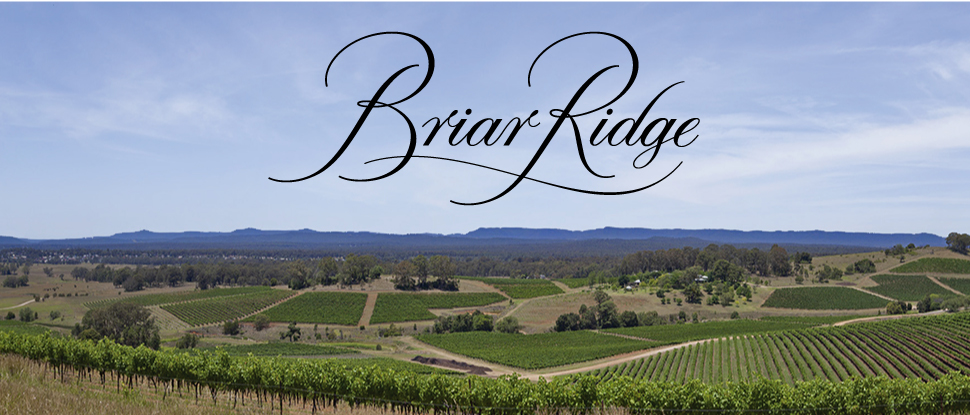 brand-page-banner-briar-ridge.jpg