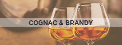 glasses and cognac alcohol graphic
